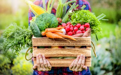 A 360 View of Organic Food and its Limitations